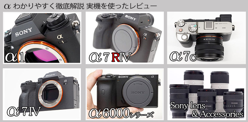 当店ではソニーのデジタル一眼カメラ 「α」 の実機を使用したレビュー記事を掲載しています。Eマウントを始め、Aマウントのカメラボディ、それぞれに使用出来るレンズ、ソニー純正アクセサリーなども紹介しています!